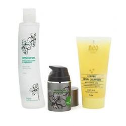 Набор Совершенство Пор из трех продуктов для проблемной кожи, Pore Perfection Pack
