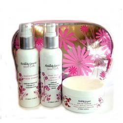 Набор средств по уходу за кожей из трех продуктов в фирменной косметичке Skin care travel kit